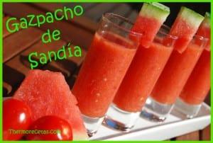 Receta facil thermomix gazpacho de sandía
