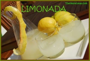 Receta Facil Thermomix Limonada