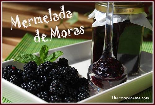 Receta thermomix mermalada de moras