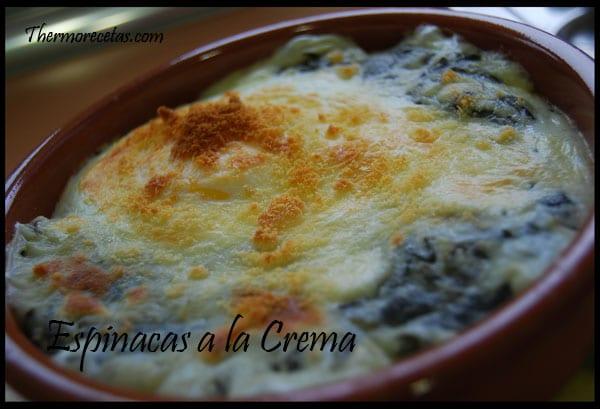 Recetas thermomix espinacas a la crema