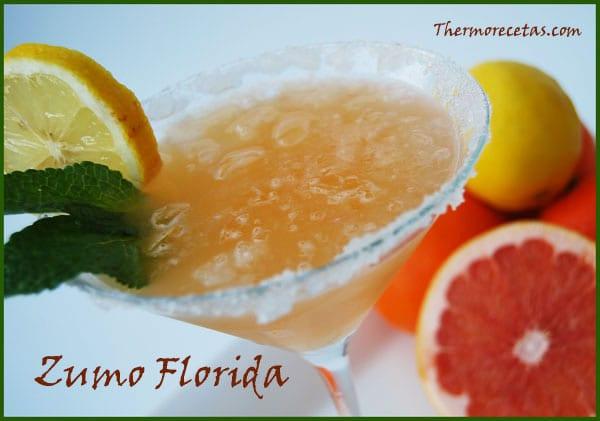 Receta Fácil thermomix Zumo Florida