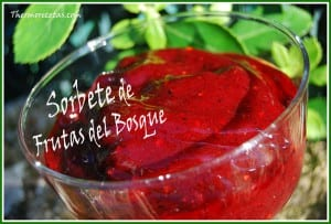 receta postres thermomix sorbete de frutas del bosque