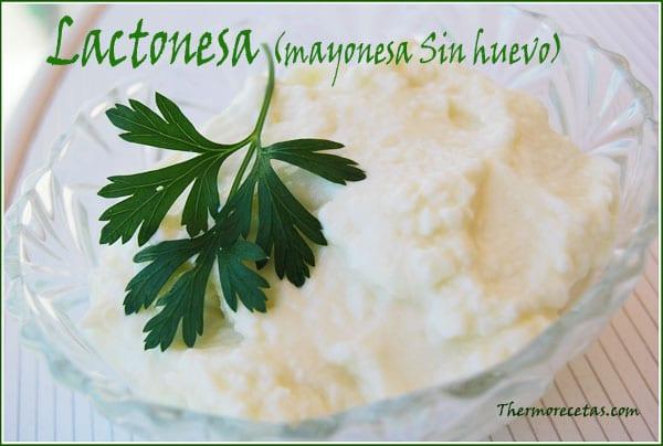 receta thermomix Lactonesa