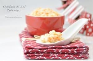 Ensalada de col - coleslaw