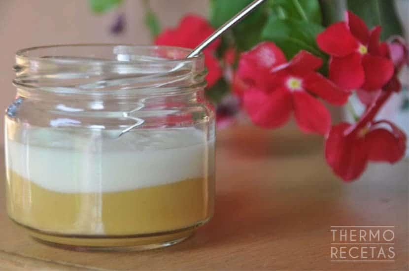 postre-de fruta-y-yogur